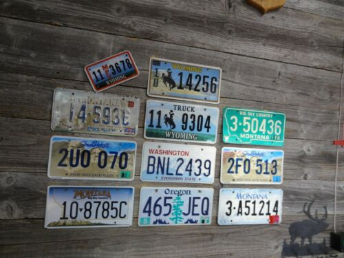 Craft Road Kill License Plates License Plate with damage great for crafts!!!!!!!