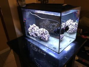 SOLD....PPU Fluval Sea evo 13.5 gallon reef tank