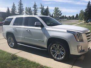 2017 Escalade Luxury with DVD