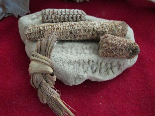 PRICE reduced COLLECTIBLE-Anasazi CORN & HOLDER+ SANDAL TIE-prehistoric HISTORY