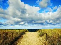 Ferienwohnung Ostsee/Graal-Müritz, strandnah, inkl. WLAN Bad Doberan - Landkreis - Graal-Müritz Vorschau