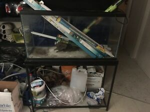 Aquarium supplies blow out
