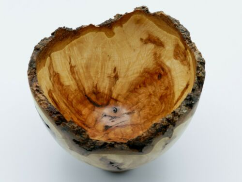 Handmade Natural Edge Hard Red Maple Burl Bowl. With Beautiful Colors!  #92
