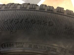 Avalanche xtreme 275 60r20 winter tires