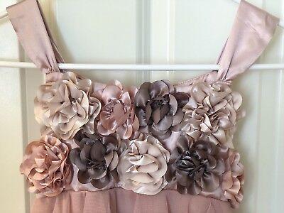 NWT Biscotti 10 Girls Rose Pink Tulle Organza 3D Flower Corsage Dress Wedding