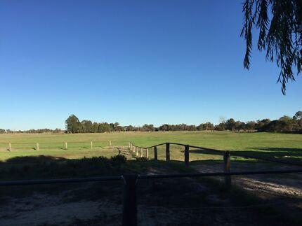 Natural Based Horse Agistment Bullsbrook Swan Area Preview
