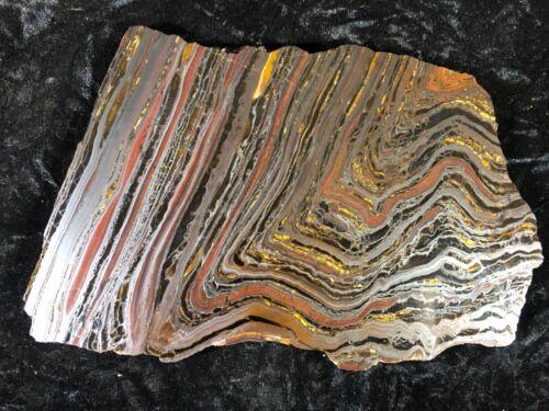 "Banded Iron Formation Stromatolite Cyanobacteria Tiger Iron Western Australia 9"""