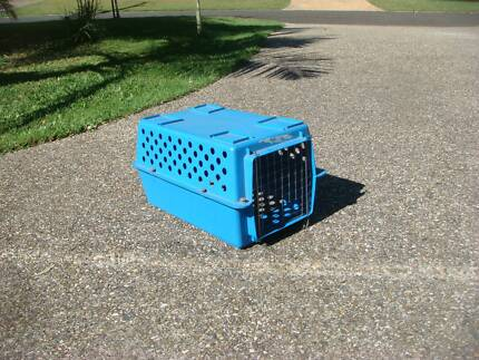 Blue Cat Carrying Box Moorooka Brisbane South West Preview