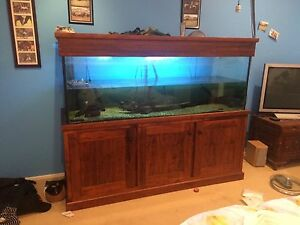 6ft by 2ft by 2ft fish tank and stand for sale East Gresford Dungog Area Preview
