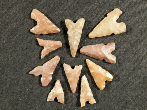 A Big Lot of TEN! Ancient Neolithic Tidikelt Arrowheads 1.57