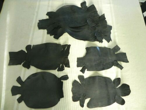 Lot of 10 Genuine Black Lizard Skins                                  #5c