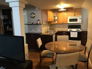 1 bedroom Furnished basement suite Downtown Peace River