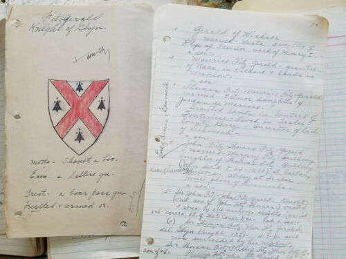 RARE Handwritten Lineage Note Book & Docs Daughters of American Revolution DAR