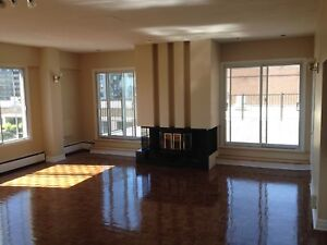 Now Renting! 1 Bedroom Penthouse for rent in Montreal