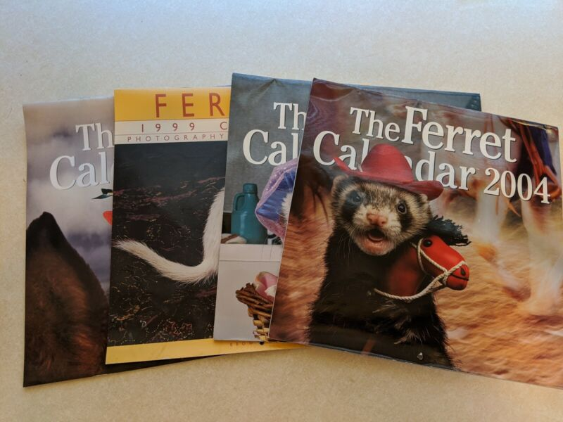 Ferret Wall Calendars - Pictures Suitable for Framing! - Lot of 4 - SO CUTE!