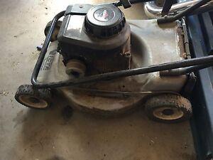 Vita mower with briggs and stratton engine Elderslie Camden Area Preview