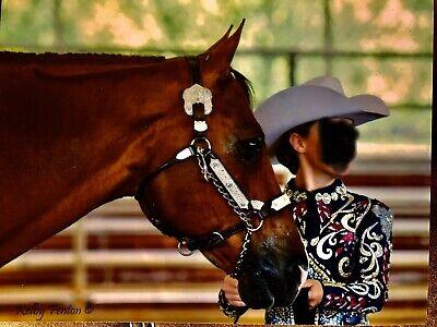 7 Colors Women/'s western show slinky leadline horsemanship pleasure xs S M L XL