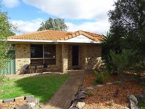 OWNERS SAY SELL Munbilla Ipswich South Preview