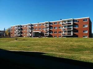 2 Bedroom very close to MUN! 1ST MONTH FREE! St. John's Newfoundland image 1
