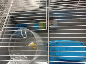 Cages a hamster