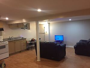 Furnished basement apartment for single full time working person