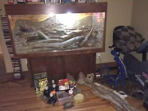 Custom made reptile tank