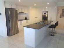 MODERN QUALITY SECOND HAND KITCHEN FOR SALE WITH OVEN & RANGEHOOD Thornlands Redland Area Preview