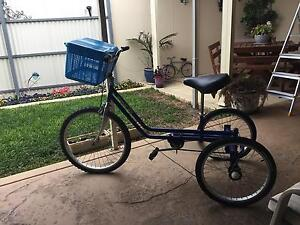 Adult pedal power tricycle Peterhead Port Adelaide Area Preview