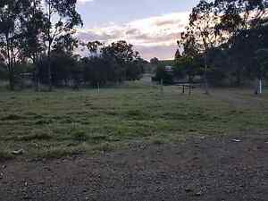 House on 10 acres for rent Mount Larcom Gladstone Surrounds Preview