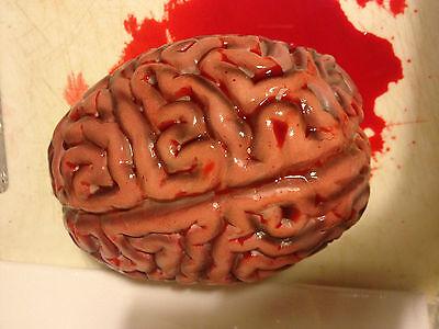 Halloween Human Brain Prop Decoration Realistic Life Size Chop Shop Blood - Brain Decorations