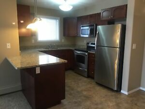 2 Bed 2 Bath Condo in Lakewood for Rent