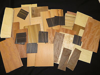 Small Pieces Mixed Exotic Common Wood Veneer Artist Pack
