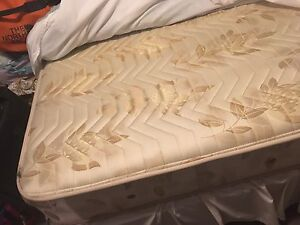 Free queen mattress! Manly Manly Area Preview