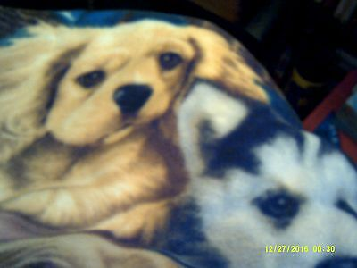 HANDMADE DOG/BLANKET/BED LARGE BIG DOG PICS