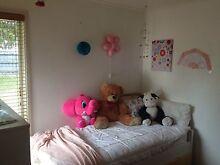 Room for Rent Frankston Frankston Area Preview