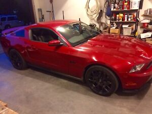 2011 GT/CS Ford Mustang 600whp supercharged supercharger