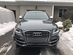 Audi SQ5 technik 2015