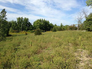 Beautiful 5 Acre lot with woods and field by Trent River Belleville Belleville Area image 9