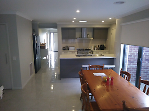 Brand new modern town house. Room for rent. $200 pw East Geelong Geelong City Preview