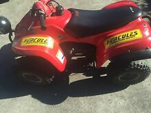 Quad bike 50cc Beverly Hills Hurstville Area Preview