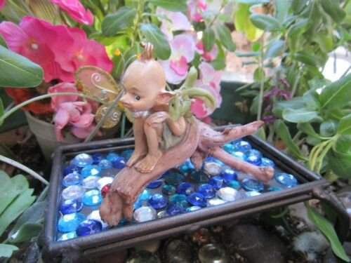 Fairy Garden Pixie Figurine on a Log with a Dragon Top Land Trading NEW in Box!