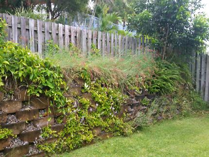 Gardening, Weeding, Pruning