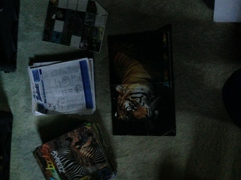 zoobooks lot over 60 includes activity sheets and poster