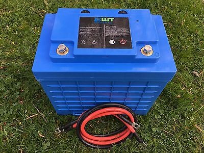 LIFEPO4 12V 100AH LITHIUM PHOSPHATE DEEP CYCLE BATTERY FOR SOLAR & WIND SLA Repl