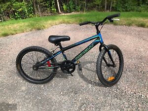 Minelli Dragon 20 bike excellent condition, used only 1 season