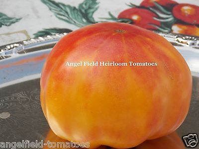 Hawaiian Pineapple Heirloom Tomato Seeds 20 Fruit ...