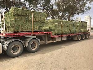 PREMIUM LUCERNE HAY Gawler Gawler Area Preview