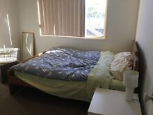 Furnished Master bedroom w walks in wardrobe Carina Heights Brisbane South East Preview