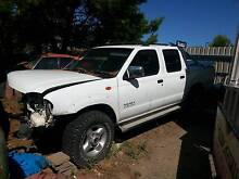 Wrecking Nissan Navara D22 Seaford Meadows Morphett Vale Area Preview
