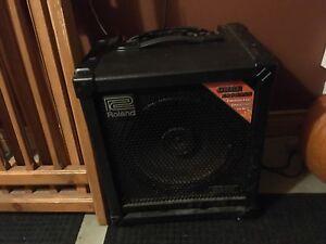 Roland Cube-100 Bass Amp